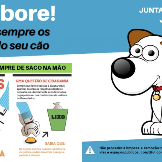 Campanha_JFJ_DejetosAnimais
